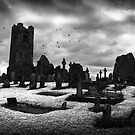 Slane Abbey Graveyard by Amanda Norman