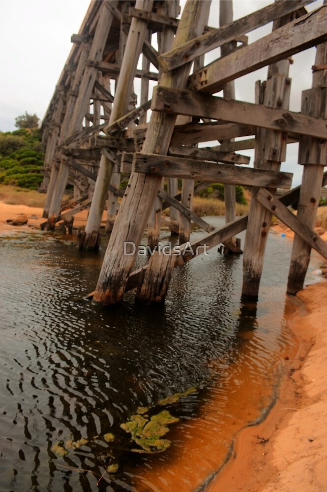 0245 Kilcunda Trestle Bridge by DavidsArt