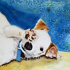 Jack  Russell Terrier Junior by Yvonne Carter