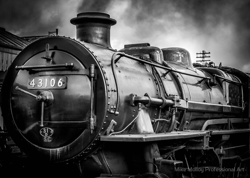 Train 43106 by Mike Molloy Professional Art