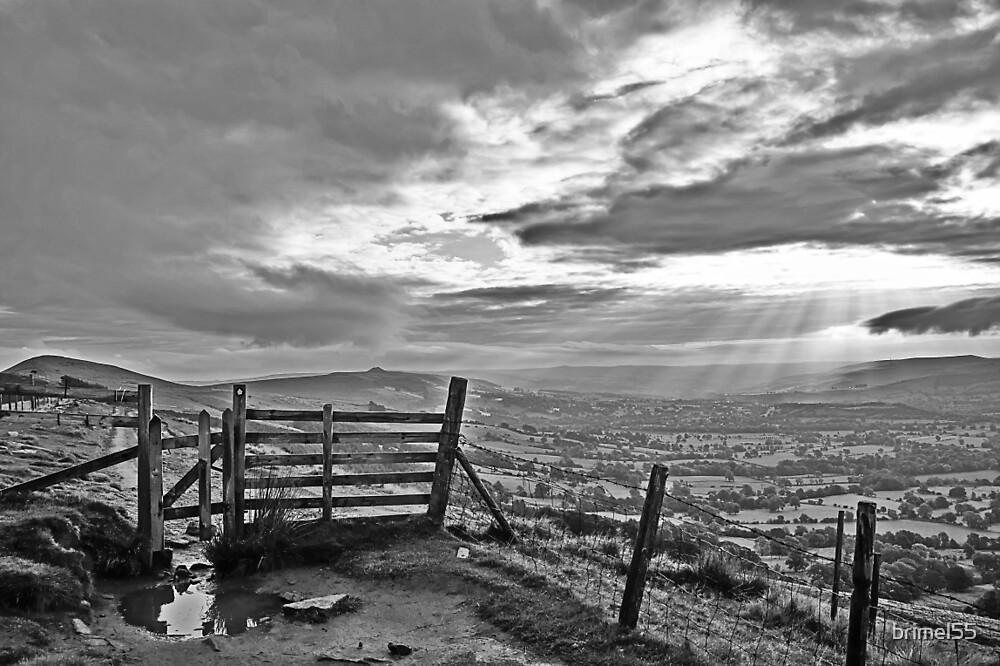 Weak Winter Sunlight by brimel55