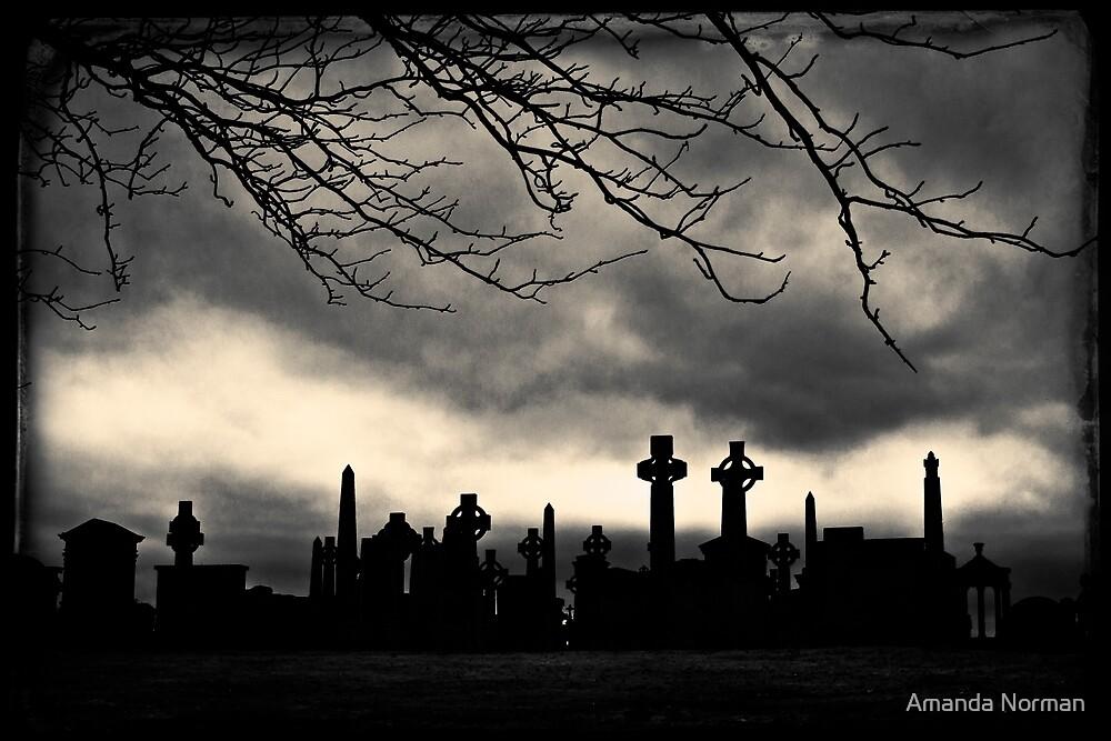 Glasgow Necropolis by Amanda Norman by Amanda Norman