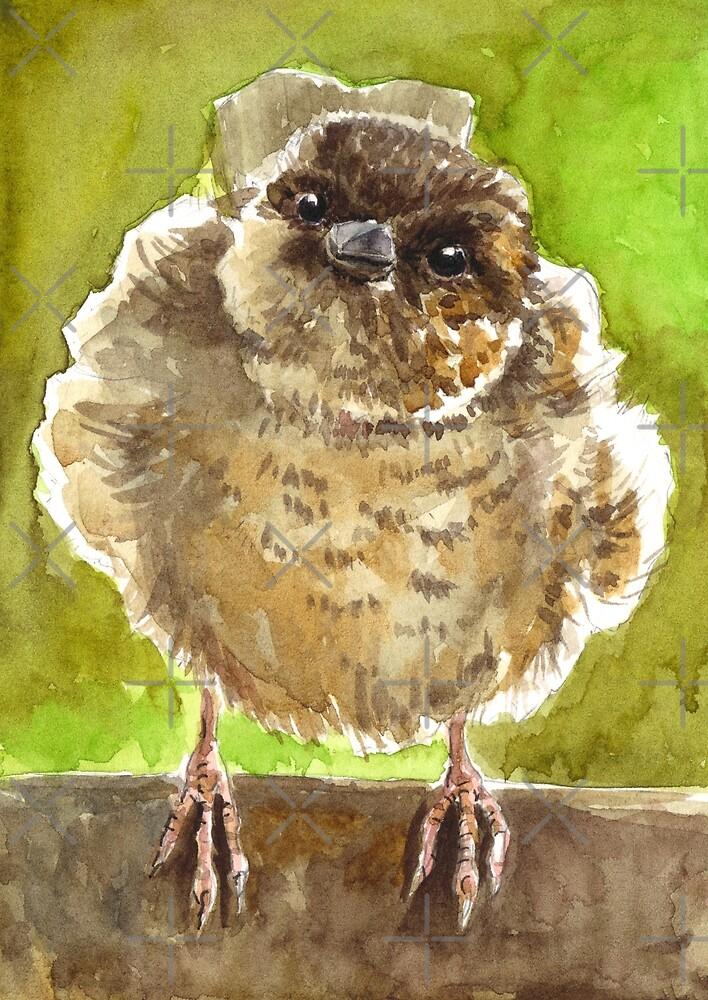 Sparrow by Katerina Kirilova