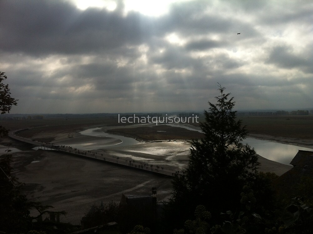 View of the Estuary by lechatquisourit