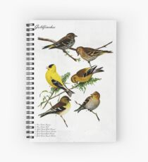 Gold Finches and Pine Siskins Spiral Notebook