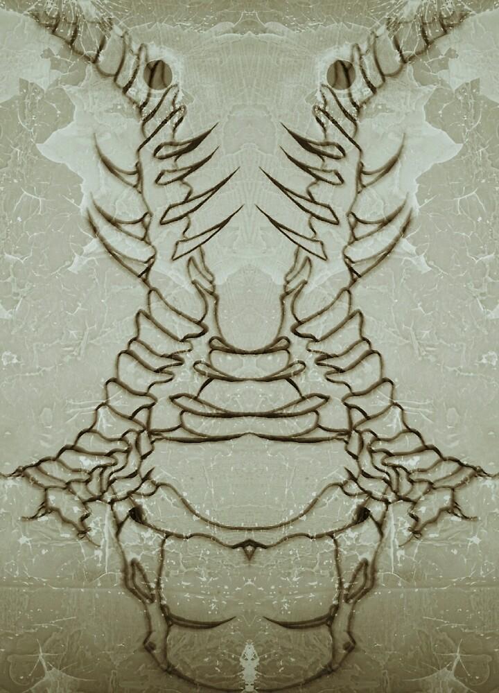 Untitled by jeremytrope1
