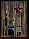 The Lone Star by Sheryl Gerhard