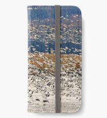 Snow Geese At Willow Point iPhone Wallet/Case/Skin
