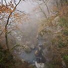 Fog on Barbennaz by Patrick Morand