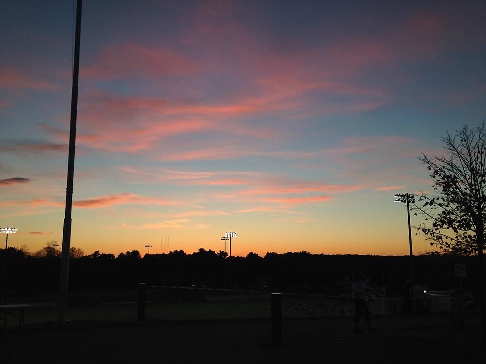 Pink Sky by Jill Robins