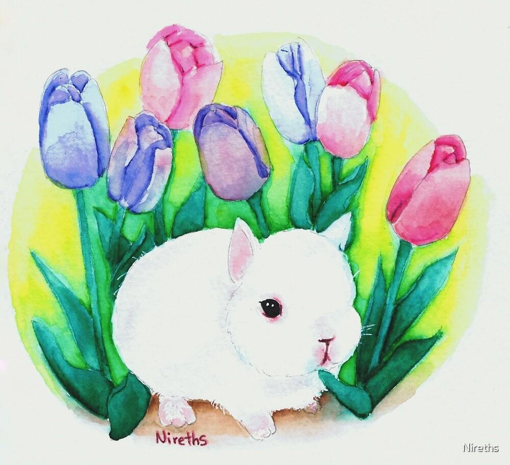 Baby Bunny by Nireths