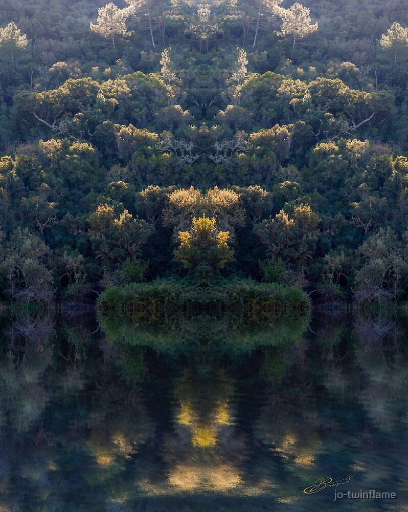 Wild forest reflection Symetri -10 by jo-twinflame