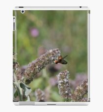 flower with insect iPad Case/Skin