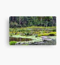 Lagoon Reflections  Canvas Print
