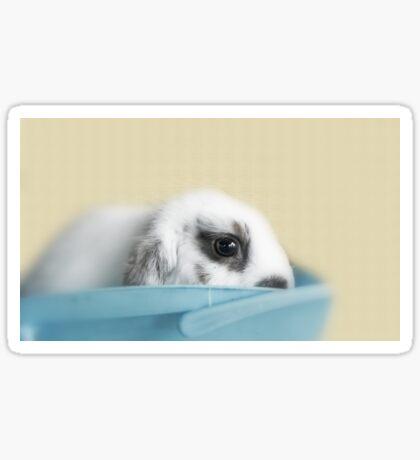 Baby Wabbit Sticker