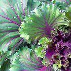 Kale by WildestArt