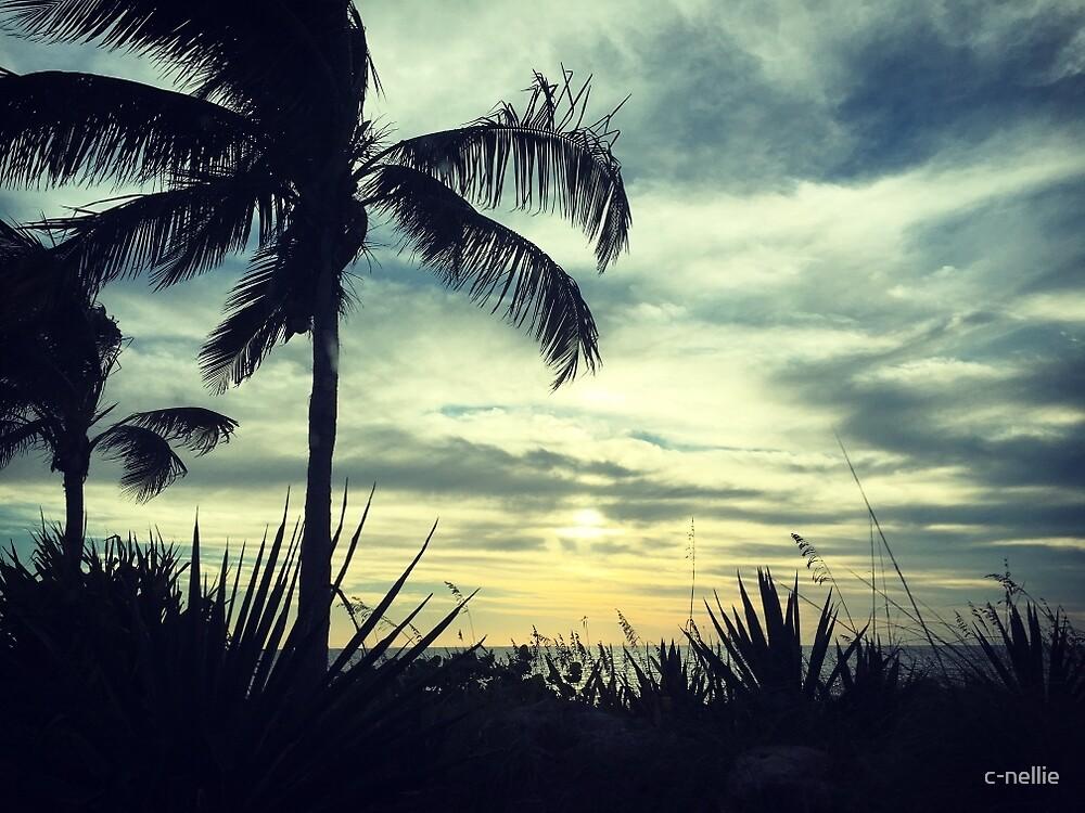 Sanibel Sunset by c-nellie