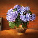 Romantic Hydrangeas by Danuta Antas