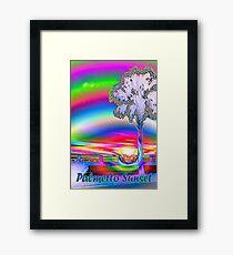 Palmetto rainbow sunset 3 Framed Print