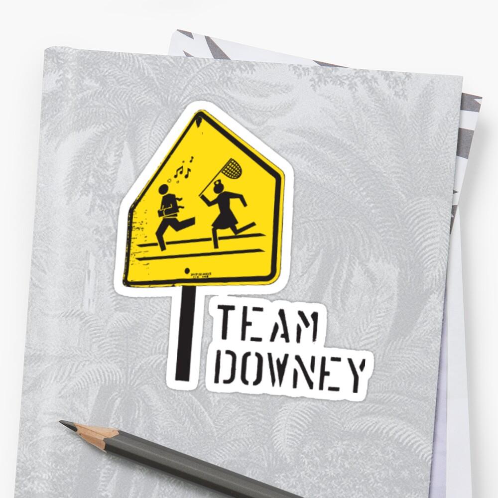 Team Downey Logo Sticker by hebabk
