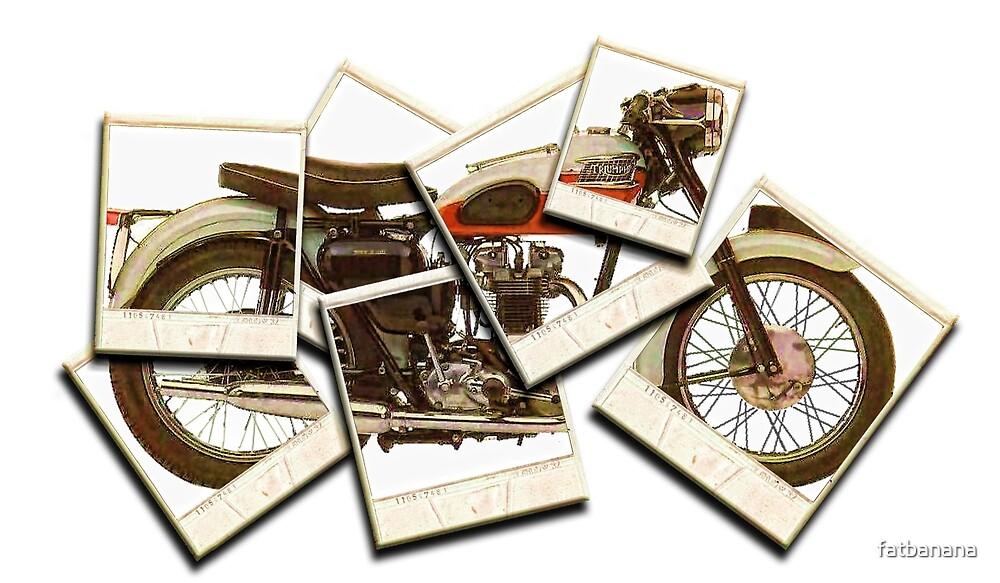 Triumph Bike Polariod Art by fatbanana