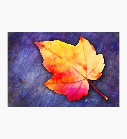 A Colorful Fall Memory Photographic Print