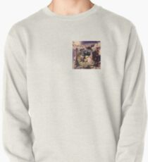 Draco the Dragon abstract in window Pullover