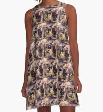 Draco the Dragon abstract in window A-Line Dress