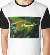Julia Heliconian butterfly, (Dryas Iulia) Graphic T-Shirt