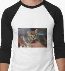 Kitten in the hand Men's Baseball ¾ T-Shirt