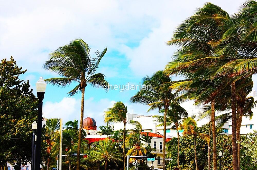 South Beach by heydarian
