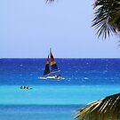 Waikiki Sailboat by Alyce Taylor