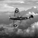 Spitfire Vb by Gary Eason