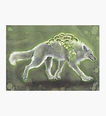 Glowing Mushroomwolf Photographic Print
