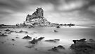 Eagles Nest - Bass Coast by Jim Worrall
