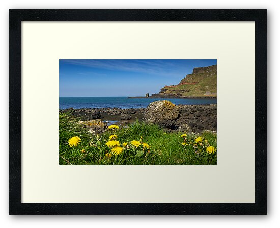 Giants Causeway by mlphoto