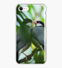 Java sparrows mating ritual iPhone Case/Skin