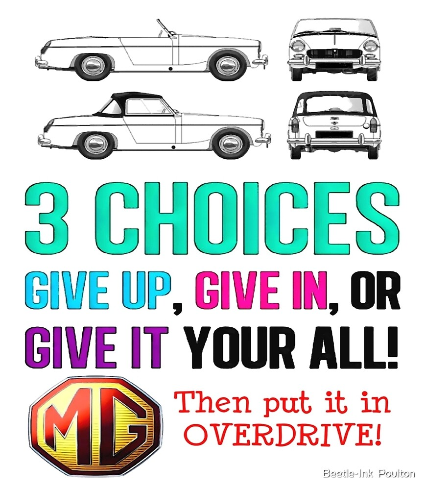 MG Three choices by Beetle-Ink  Poulton