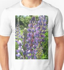 Late Afternoon Lupins T-Shirt