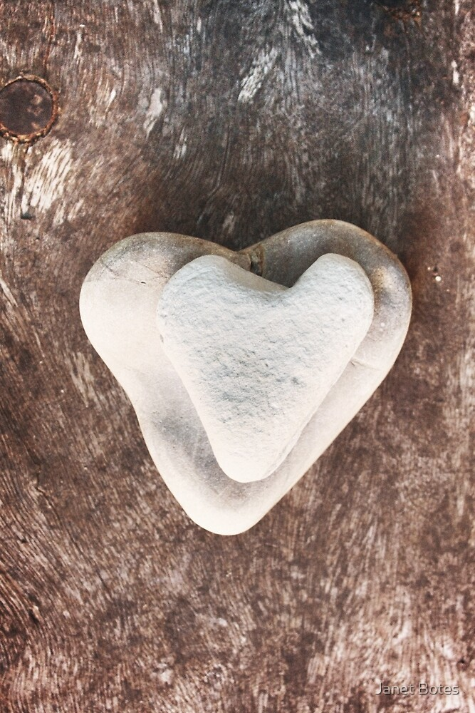 Heart rocks on wood by Janet Botes