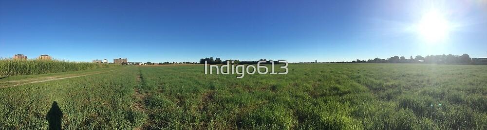 Sunny Farm by Indigo613
