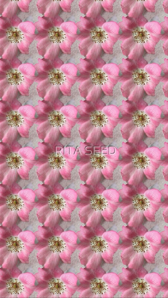 Rosy Pattern by RITA SEED