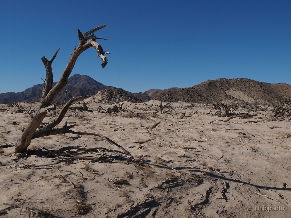 Dead Tree by chibiphoto