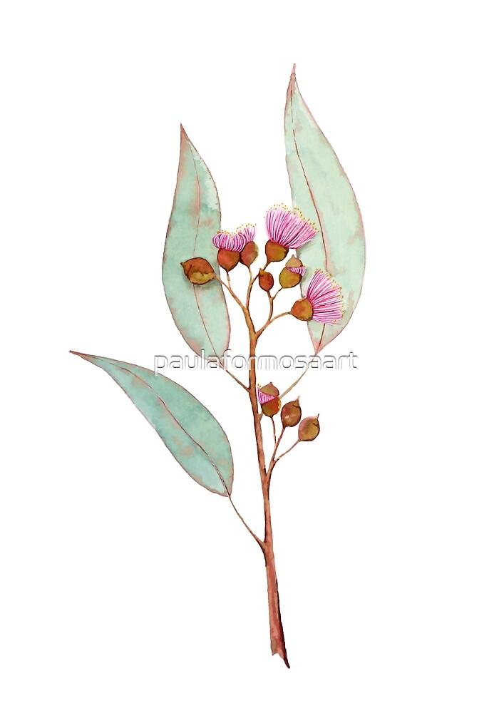 Australian Gum Nut Blossom by paulaformosaart