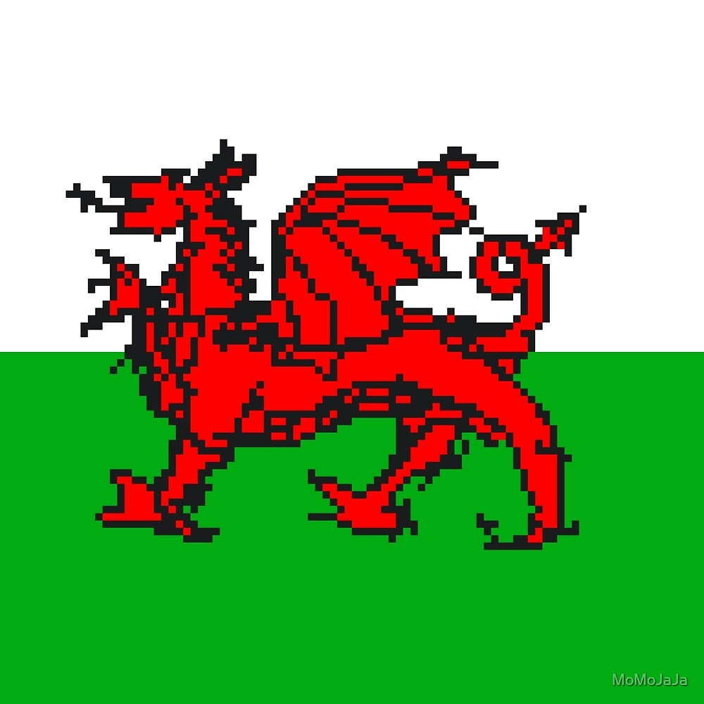 Wales National Flag by MoMoJaJa