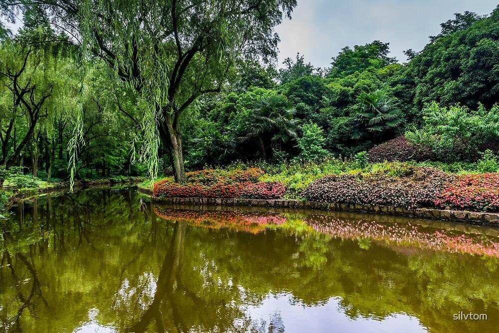 Paradise Garden by Silvia Tomarchio