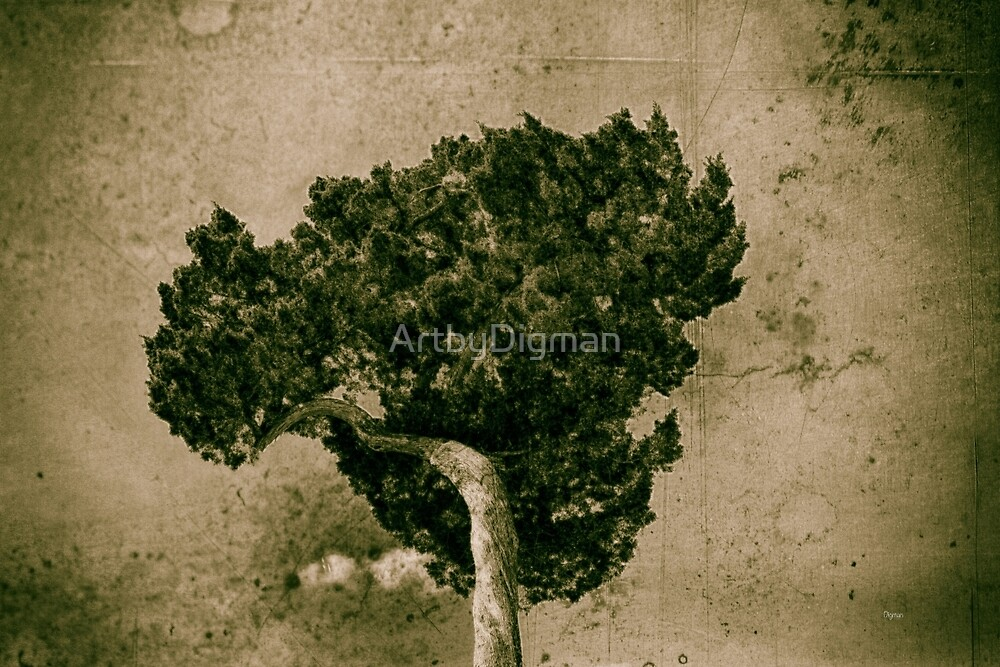 Tree Broccoli  by ArtbyDigman