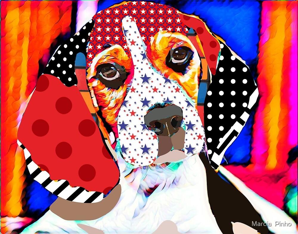 Beagle by Marcia  Pinho