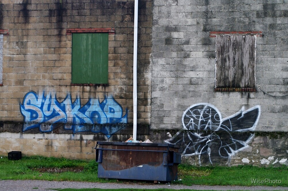 Behind The Dumpster by WisePhoto