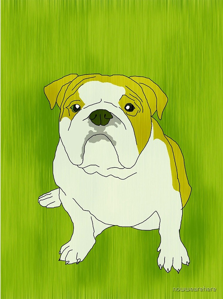 Bulldog by nowwearehere